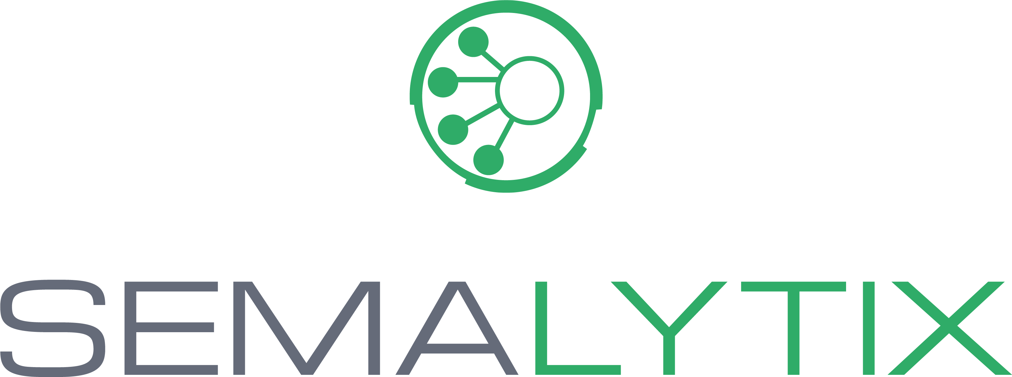 Logo_Semalytix